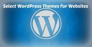 selcting wordpress theme for website