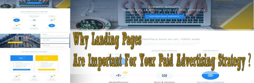 Why Landing Pages Are Important For Your Paid Advertising Strategy ?